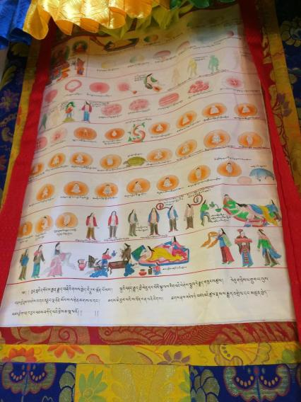 Thangka painting. This type of paintings is used for instruction and has different diagrams of herbs, surgical instruments (which are all drawn to scale), and various procedures. This close-up painting shows the stages of embryonic development.